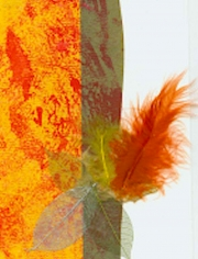 Mini Collage-Orange Feather