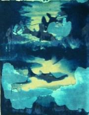 Polaroid - Fish 01
