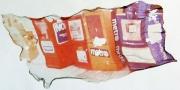 Polaroid - Kiosks on West 23 01