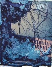 Polaroid - Metal Tree 04
